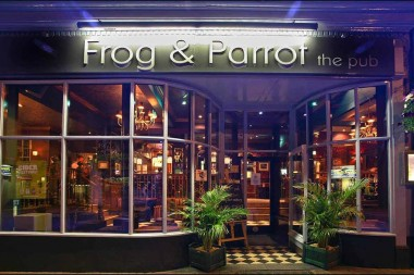 frog_and_parrot_sheffield_img_7571