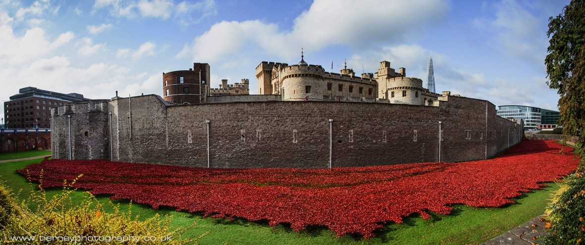 62-tower-of-london-poppies
