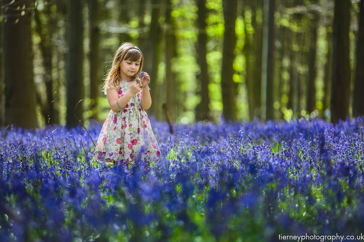 Bluebell-wood-girl