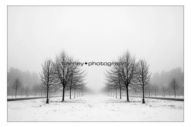 symmetry-in-the-mist-lr