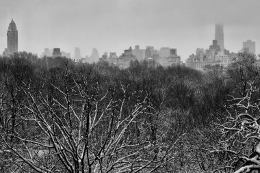 New york prints central park snow 1