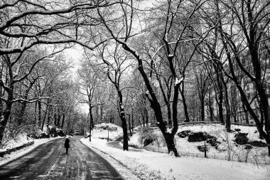 New york prints central park snow 3