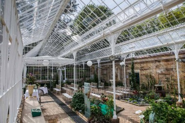 Wentworth-castle-conservatory-135